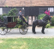 Horse and Carriage Hire in Lymington